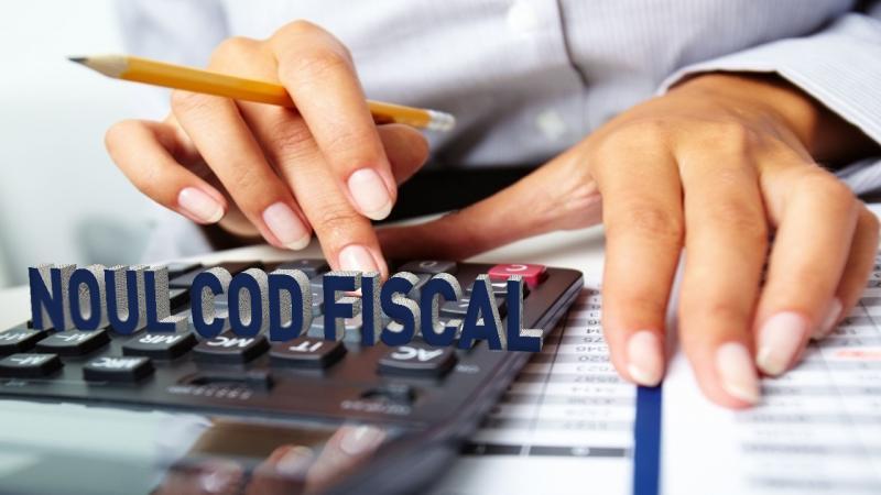"""10 efecte ale noului Cod Fiscal. Costul tăierii TVA: """"Bate calul care trage"""""""