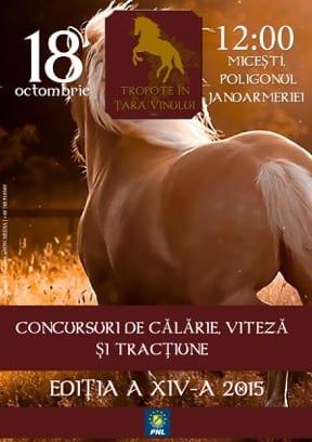 """""""Tropote în țara vinului"""", duminică ajunge la cea de-a XIV-a ediție. Comunicat."""