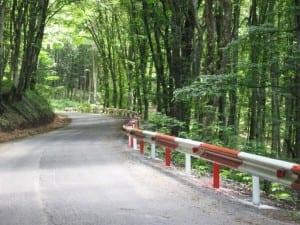 Cel mai scurt drum județean din Alba are doar doi kilometri