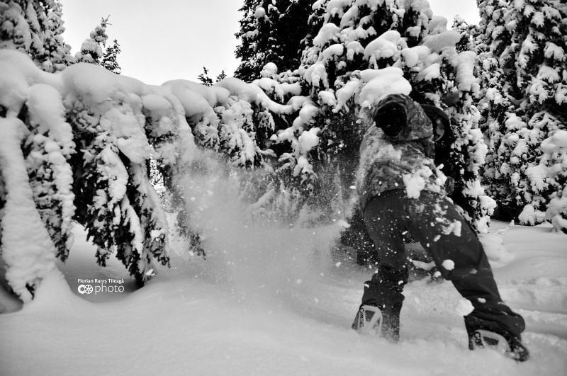 La Șureanu, zăpada de campionat. La Arieșeni, zăpadă schiabilă. Sezonul de schi continuă!