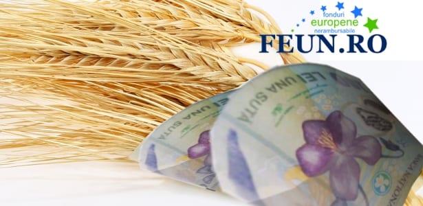 WWW.FEUN.RO : Sprijin nerambursabil pentru dezvoltarea fermelor mici!