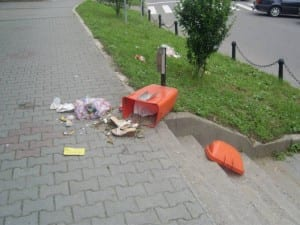 gunoi pe strada