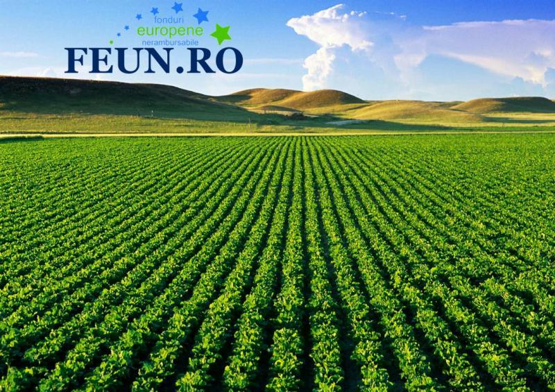 A fost eliminată obligativitatea termenului de valabilitate de 10 ani pentru contractele de arendă a terenurilor agricole
