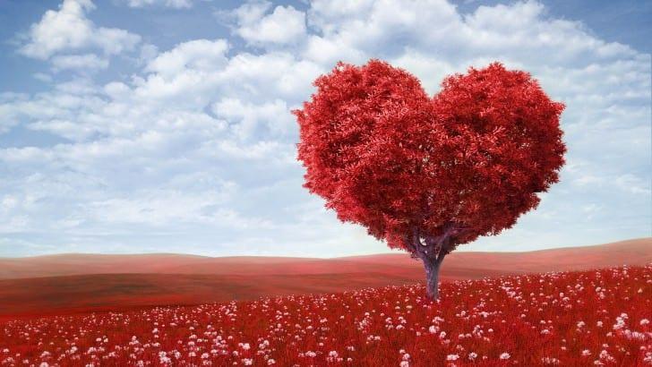 Ne place să credem că iubirea are preţ.