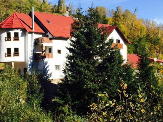 3 Motive pentru care sa vizitezi  Transalpina in aceasta vara