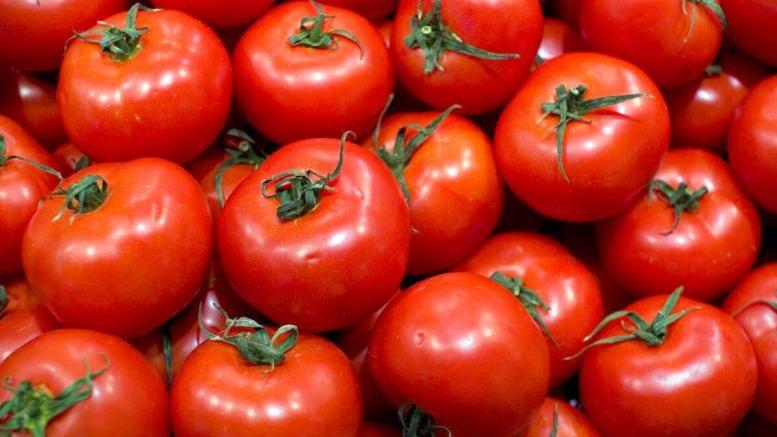 Programul de sprijin pentru tomate continuă și în 2018