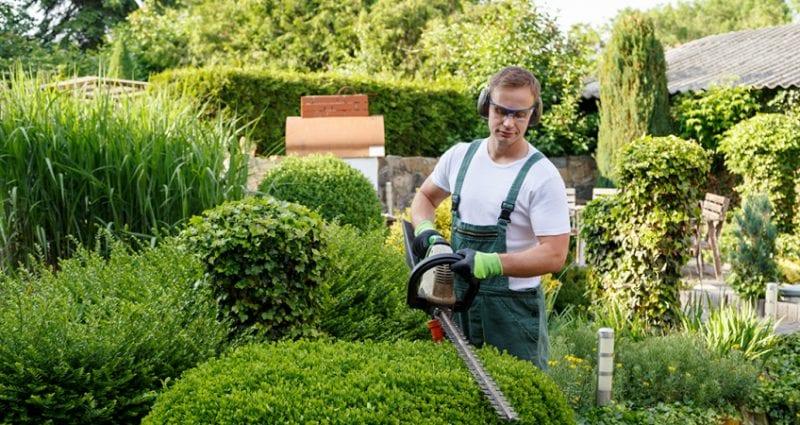 4 Idei de produse pentru gradinarit care nu ar  trebui sa iti lipseasca la inceputul primaverii