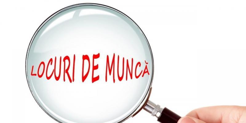 Ofertă tentantă de locuri de muncă la AJOFM Alba