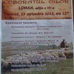 """Festivalul """"Coborâtul Oilor de la Munte la Loman"""", ediția a VII-a"""
