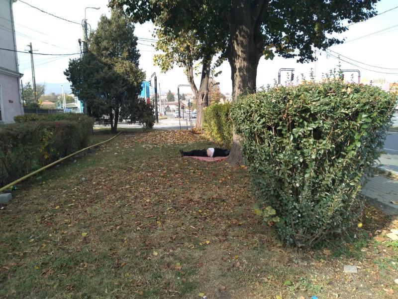 """Persoană fără adăpost, """"locuiește"""" în boscheții de lângă gara Alba Iulia (foto)"""
