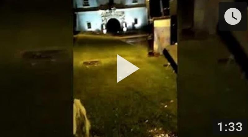 Aspersor defect irosește apă lângă poarta a V-a a Cetății Alba Carolina (video)