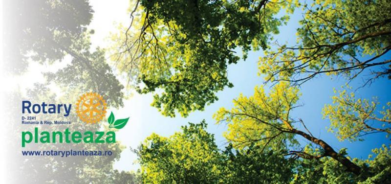 Acțiune de plantare a 100 de arbori la Sebeș