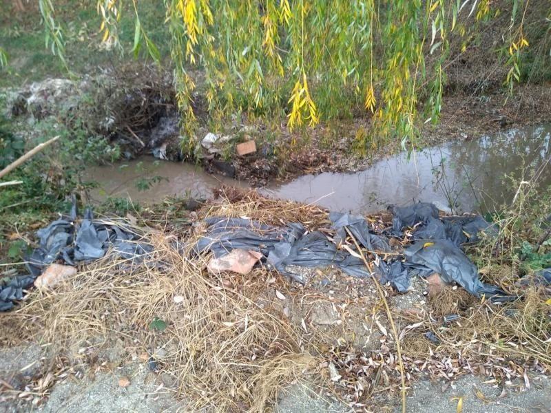 Șard – Pârâul Ighiu, sufocat de resturi menajere (foto)