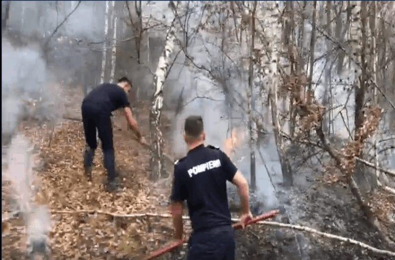 VIDEO- Pompierii din Cîmpeni luptă cu un incendiu de vegetație uscată