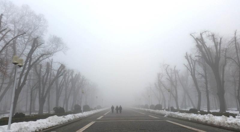 Alba – Avertizare COD GALBEN de ceață