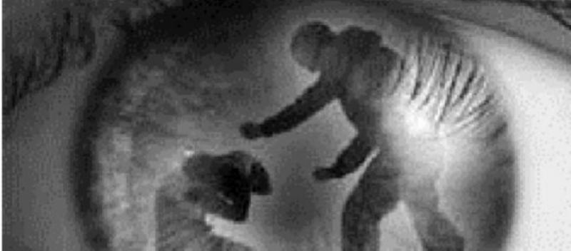 Roșia Montană – Ordin de protecție emis de polițiști după ce un bărbat și-a agresat concubina și copiii