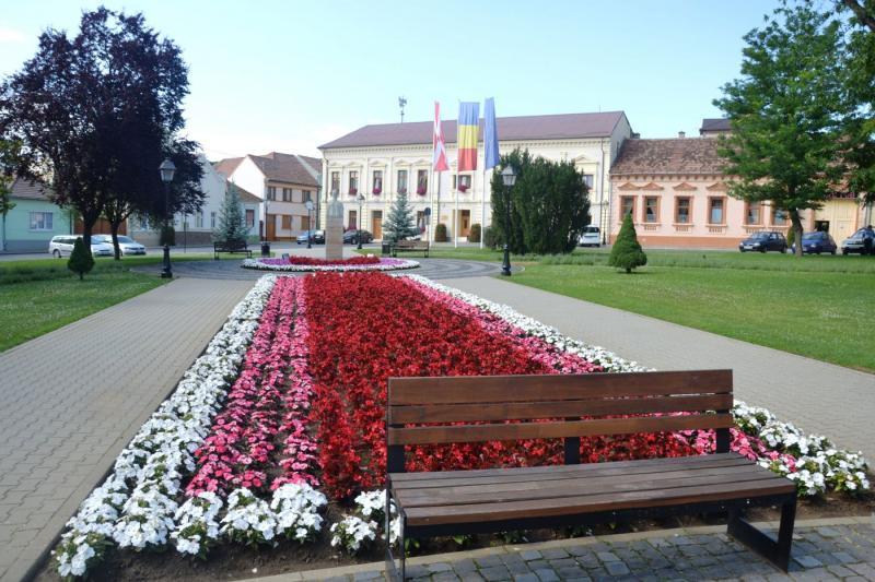Blaj – Sediul primăriei va fi renovat. Vezi unde se mută birourile instituției pe perioada lucrărilor