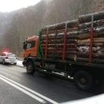 Alba - Acțiune județeană de prevenire și combatere a tăierilor ilegale de arbori (foto)
