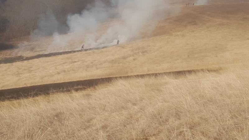 Alba Iulia – Incendiu de vegetație uscată pe strada Lalelelor