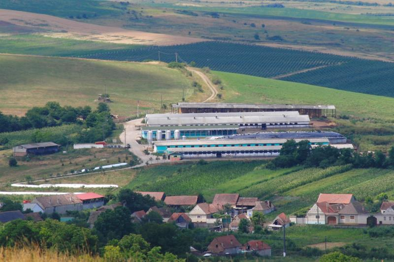 Locuri de muncă disponibile la ferma fabricii de produse lactate Bioterra din Doștat