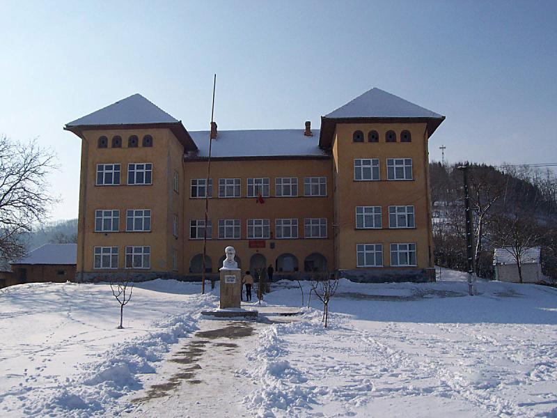 Săliștea – O profesoară de la Școala Gimnazială, acuzată că a făcut sex cu un elev minor