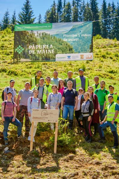 """Holzindustrie Schweighofer: Proiectul """"Pădurea de Mâine"""" plantează peste 200.000 de puieți în primăvara anului 2019"""