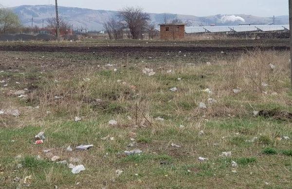 Dezastru ecologic la Sebeș! Primăria și APM Alba, nicio reacție!?! (foto)