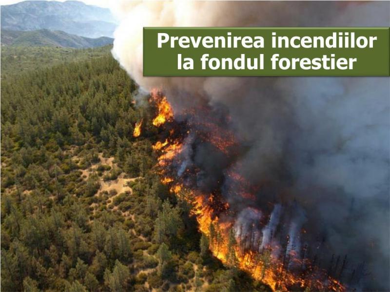 Recomandările ISU Alba pentru prevenirea incendiilor la fondul silvic