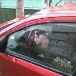 Micești - Un șofer grăbit a intrat cu mașină într-un stâlp de susținere a rețelei de energie electrică