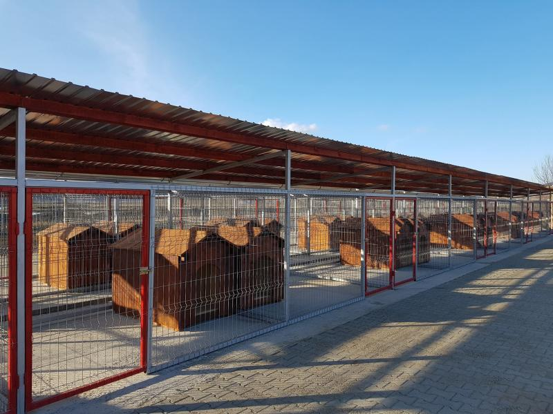 Aiud – Adăpost de câini nou-nouț, recepționat de municipalitate (foto)