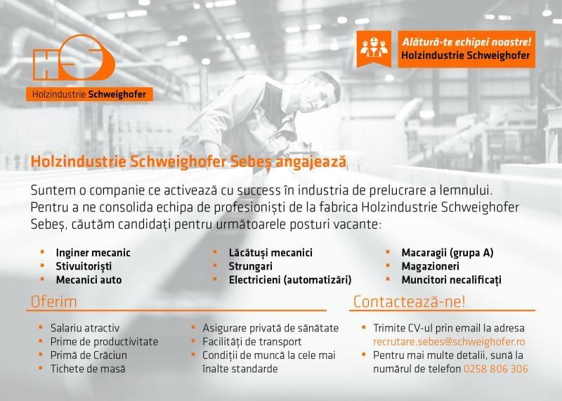 Locuri de muncă disponibile la Holzindustrie Schweighofer Sebeș