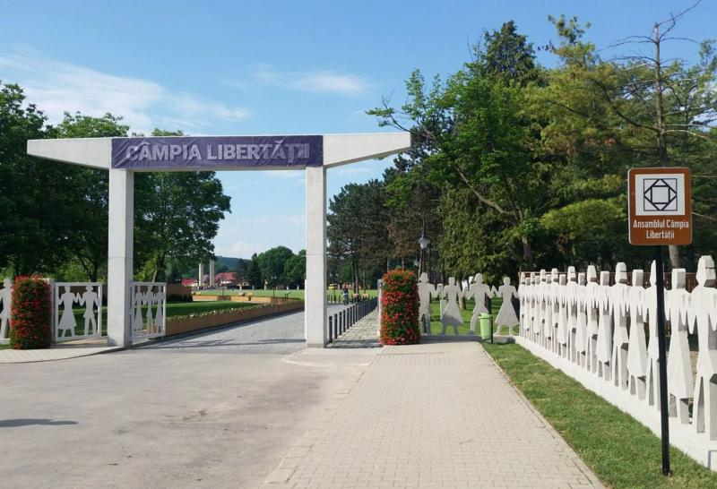 Primăria Blaj solicită Guvernului României sprijin financiar pentru organizarea vizitei Sanctității Sale, Papa Francisc