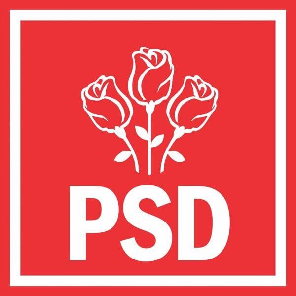 """PSD: """"România este țara cu cele mai multe Start-Up-uri din Europa"""""""