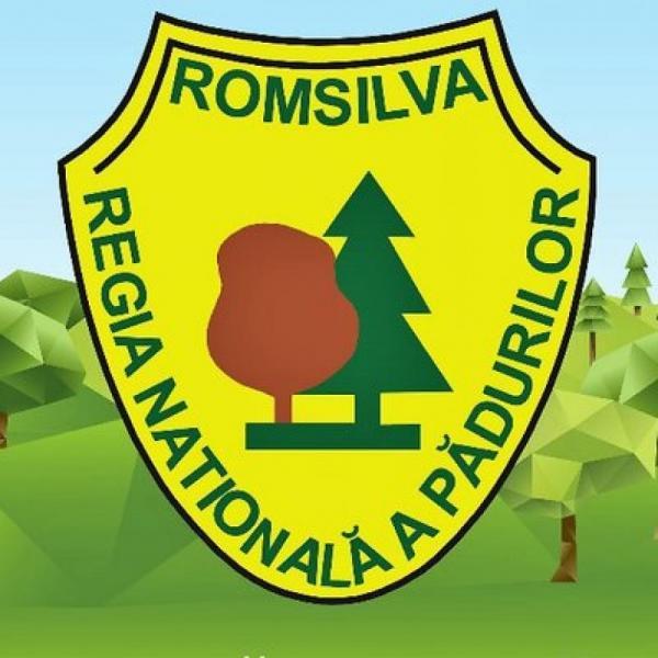 Guvernul României a aprobat bugetul de venituri și cheltuieli al Regiei Naționale a Pădurilor – Romsilva