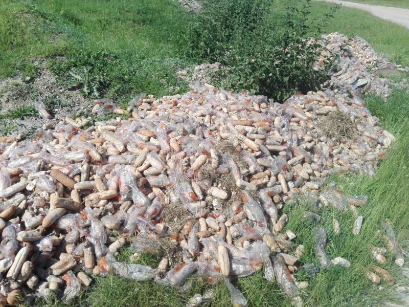 """Sute de kilograme de cornuri din programul """" Cornul și laptele"""", aruncate pe malul Mureșului, lângă Cisteiu de Mureș (foto)"""