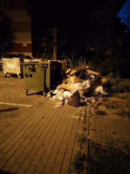 """Știrea ta! """"Colectare selectivă"""" a gunoiului pe strada Vasile Goldiș din Alba Iulia!?! (foto)"""