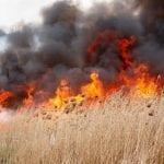 Alba Iulia - Incendiu de vegetație uscată în zona Schit