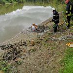 Intervenție a pompierilor albaiulieni pentru salvarea unui pescar blocat în nămol