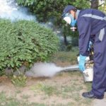 Anunț public - Lucrări de deratizare și dezinsecție pe raza municipiului Sebeș