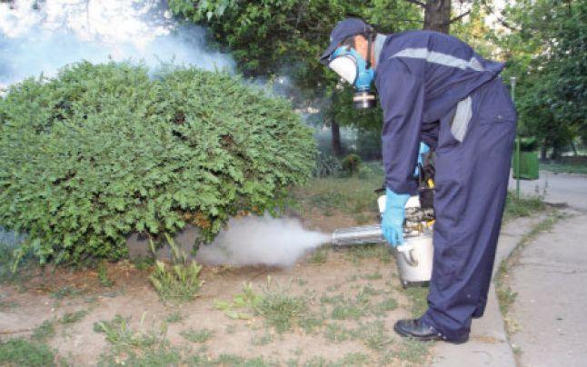 Anunț public – Lucrări de deratizare și dezinsecție pe raza municipiului Sebeș