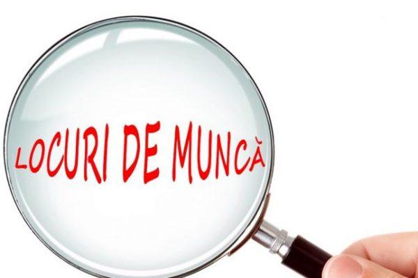 AJOFM Alba - Lista locurilor de muncă vacante în județ la data de 13 august