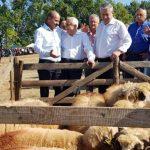 Ioan Dîrzu  împreună cu  ministrul Petre Daea in vizită la Loman si Petresti