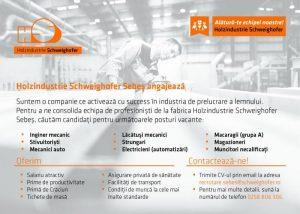 Angajări pe mai multe posturi la fabrica de cherestea Holzindustrie Schweighofer Sebeș