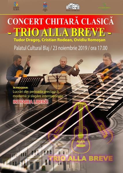 Concert de chitară clasică la Blaj