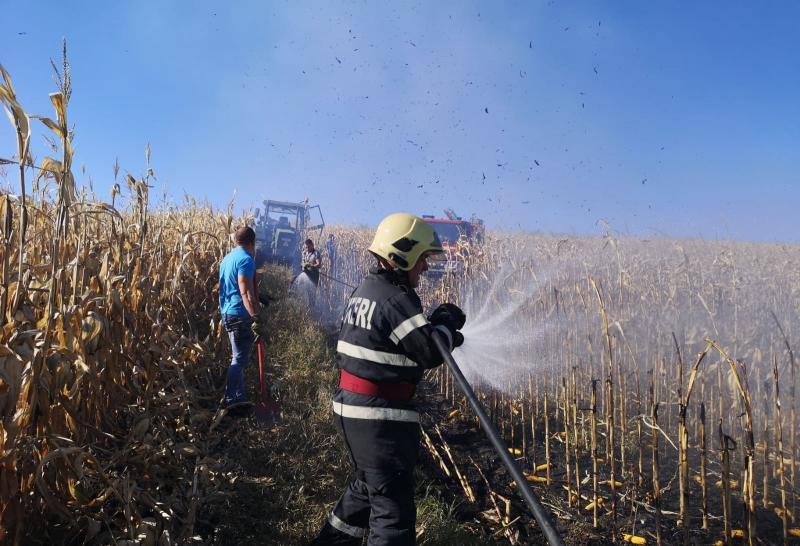 Intervenție a pompierilor din Alba Iulia pentru stingerea unui incendiu izbucnit la un lan de porumb din Mihalț