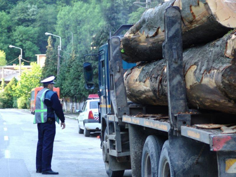 Amenzi de 43.180 lei și 33,7 mc de lemn confiscați în urma unei acțiuni a IPJ Alba