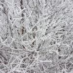 Meteo – Ceață deasă și chiciură în mai multe localități din județul Alba