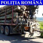 Un nou episod al operațiunii ''Scutul pădurii'' s-a încheiat cu amenzi și confiscări de material lemnos