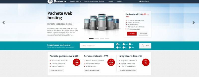 3 Detalii de care sa tii cont atunci cand iti doresti cel mai bun serviciu de web hosting pentru afacerea ta