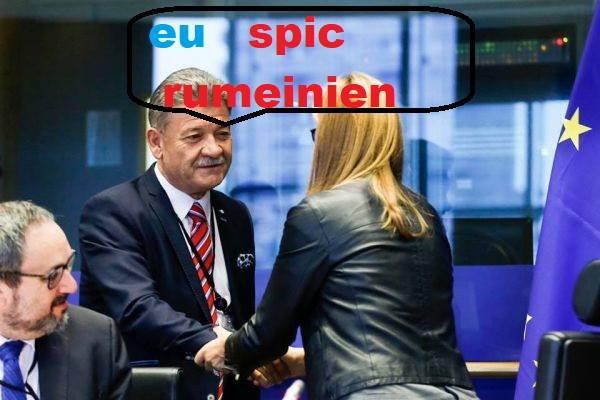 După câteva luni la Bruxelles, Mircea Hava e bucuros că vorbește o limbă străină (pentru alții)